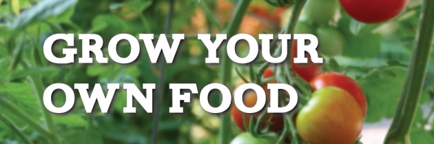 grow-your-food-banner