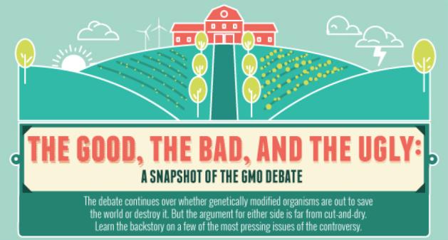 GMO 2
