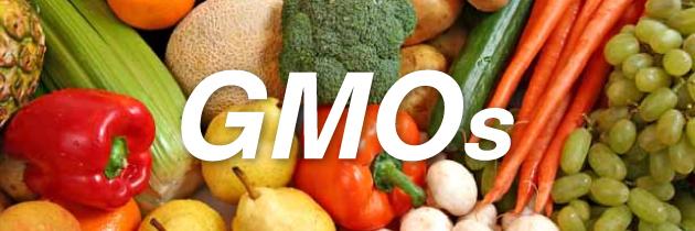 GMOs-Header