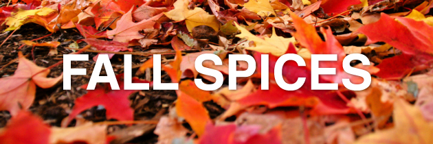 Fall-Spices