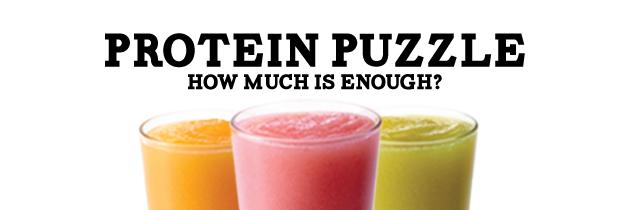 Protein-Puzzle-Header