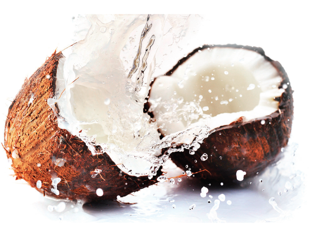 coconut-cocoanut
