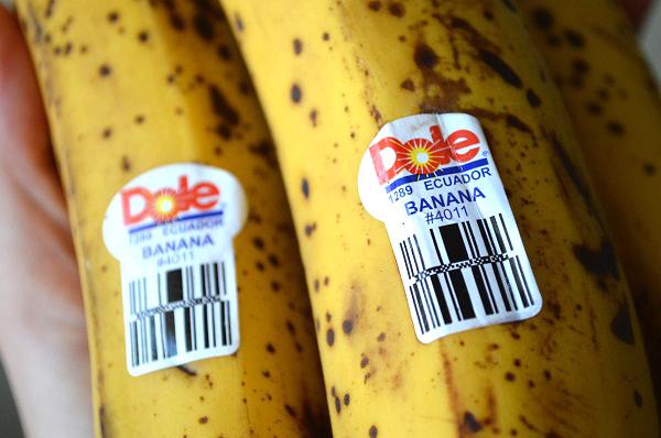 Banana-from-Ecuador.jpg