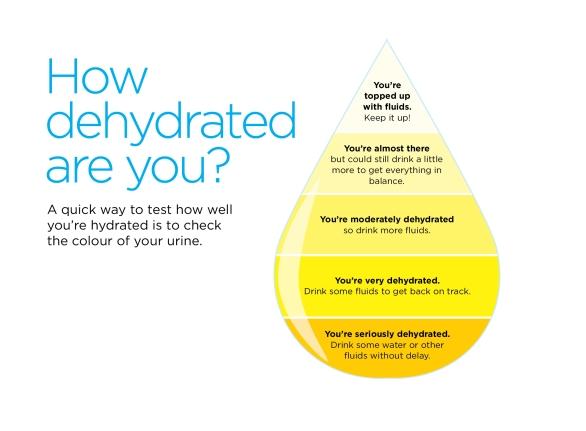 Hydration_FINAL.jpg
